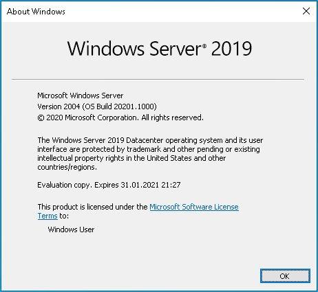 Nach dem In-Place Upgrade auf Windows Server vNext 2004 (Build 20201)